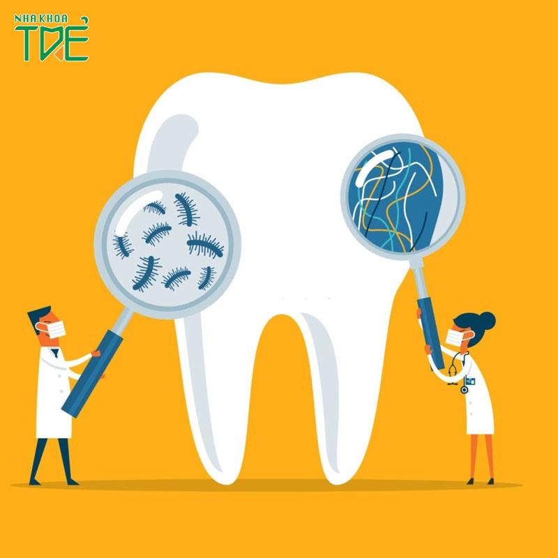 Cách làm sạch mảng bám trên răng hiệu quả cho cả trẻ và người lớn
