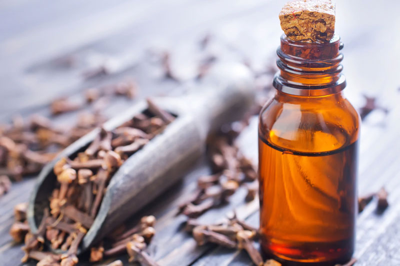 Có thể sử dụng đinh hương để giảm đau răng ngay tại nhà