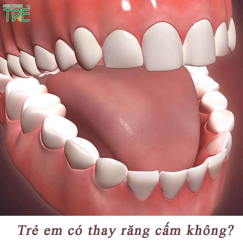 Trẻ em có thay răng cấm không?