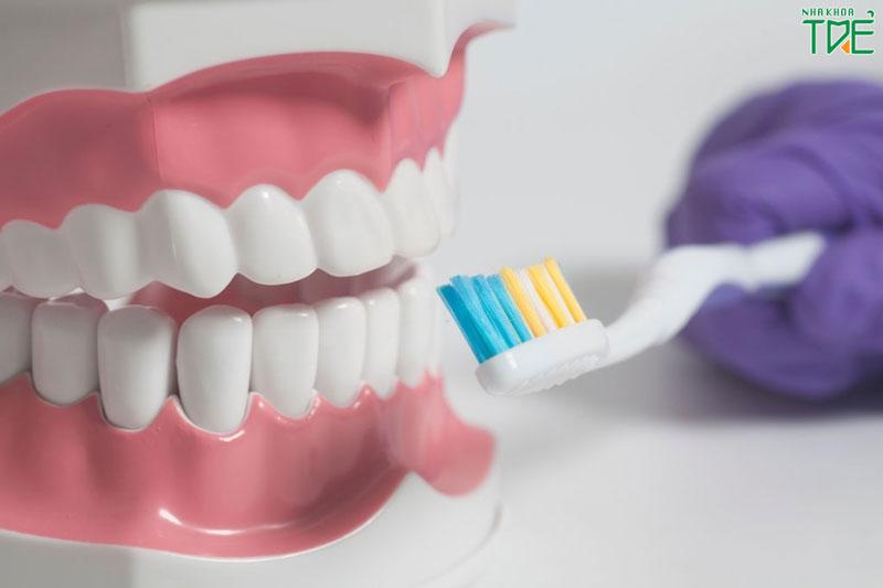 Hướng dẫn vệ sinh răng giả tháo lắp đúng cách giúp sử dụng lâu dài